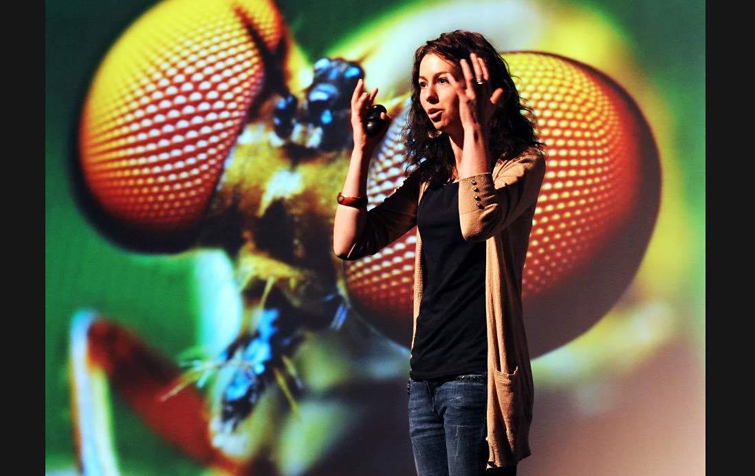 Sarah Beynon Agent | Dr Sarah Beynon Agent | Book Dr Sarah Beynon | Pembrokeshire Bug Farm | Grub Kitchen